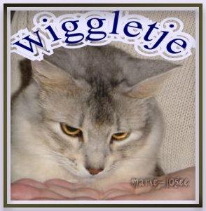 wiggletje(1)